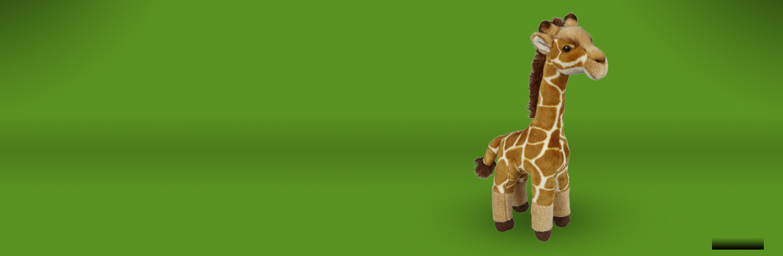 A giraffe soft toy on a green background