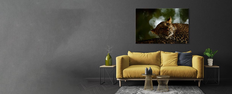 Bestselling wall prints