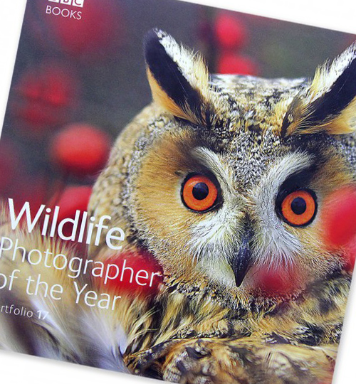 50-off-WPY-books-offer | NHM shop