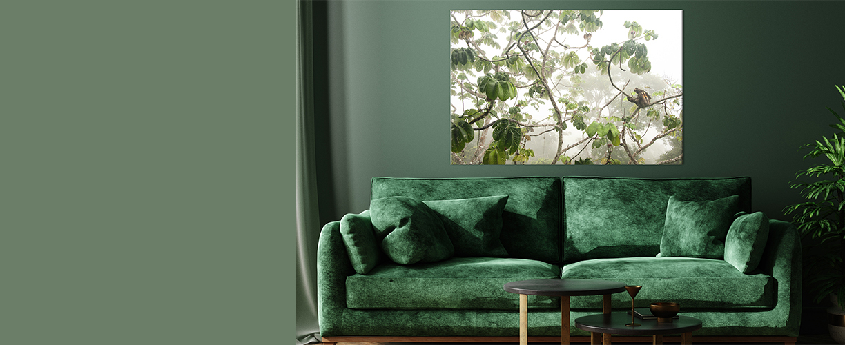 Canopy Hang-out print in green living room