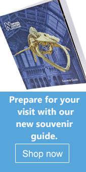 New souvenir guide book for the Natural History Museum