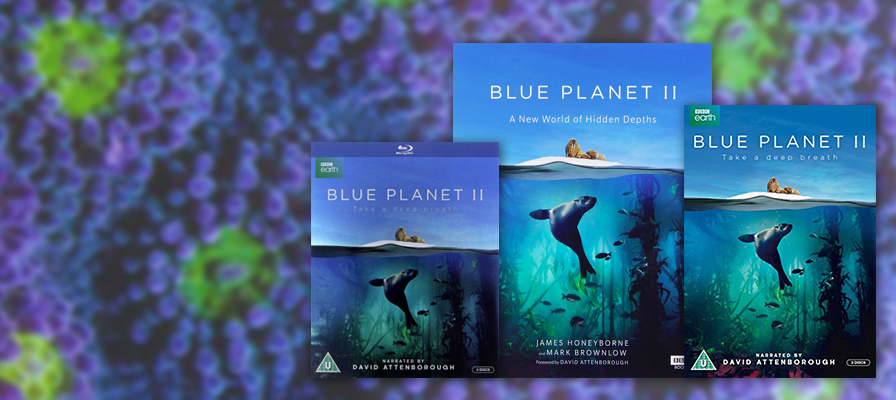 Blue Planet 2 DVD, book and Blu Ray against coral background