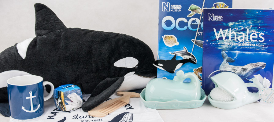 Orca whale soft toy with ocean sticker book, orca whale necklace and various whale themed homeware and toys