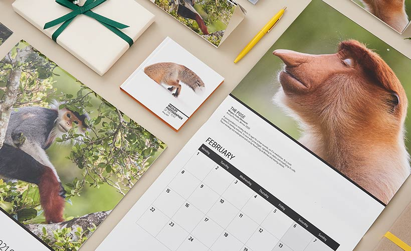 Wildlife Photographer of the Year diaries and calendars